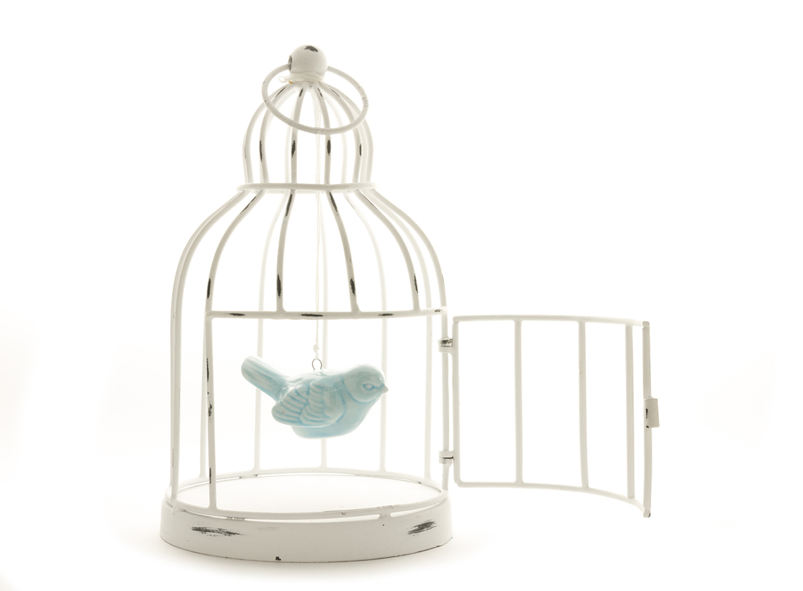 The Human Soul Is Like A Bird That Is Born In A Cage: Helping Someone Who Is Trapped But May Not Want To Change