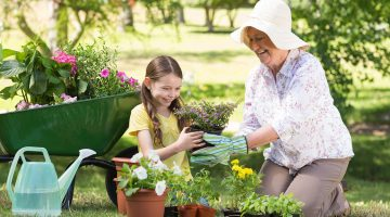 Strong and sage: Influencing grandparents toward intentionality